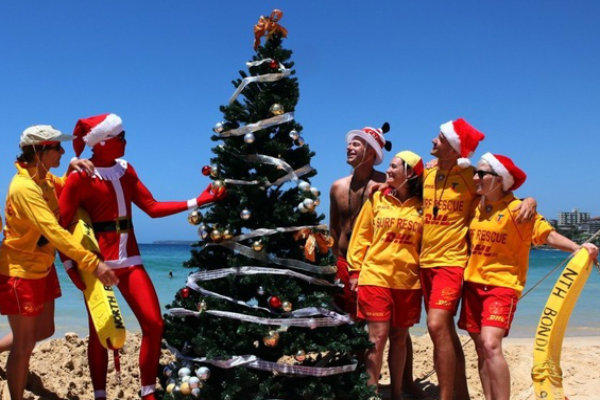 Image result for australian christmas on beach